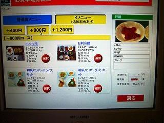 追加料金メニュー(800円)